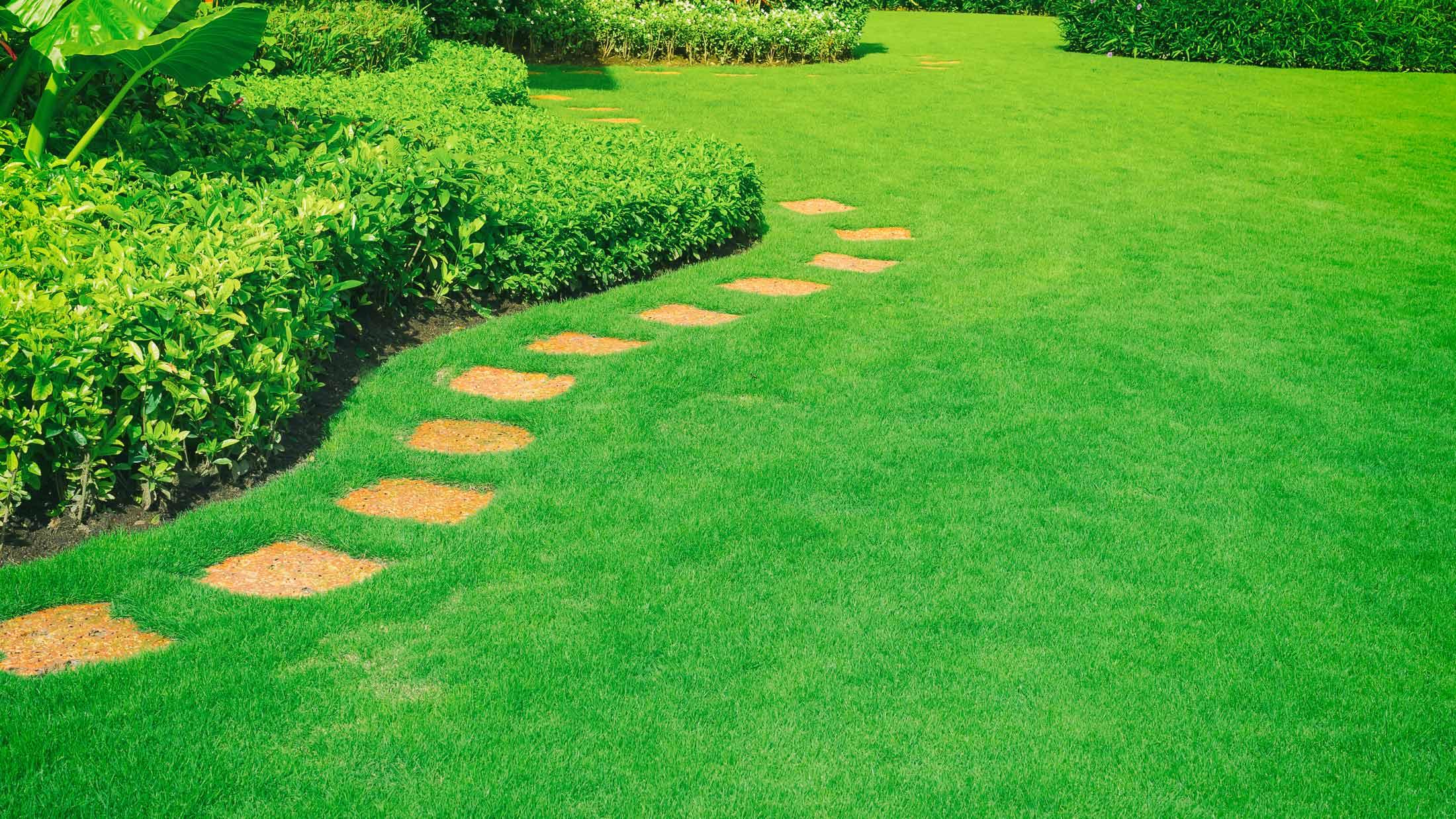 Does Your Landscape Have Room for Improvement?